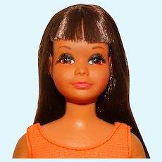 RARE Vintage Brunette Japanese Exclusive Sun Sun Skipper Doll
