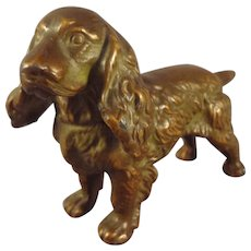 Miniature Bronze Spaniel Dog