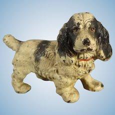 Miniature Cast Iron Spaniel Dog