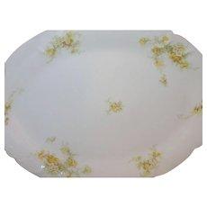 Vintage O&E.G. Royal Austria Platter Dish