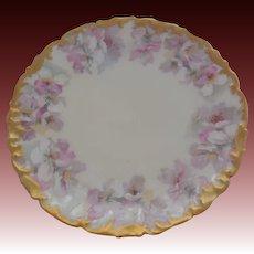 """T & V Limoges France Porcelain Floral Plate  8.25"""""""