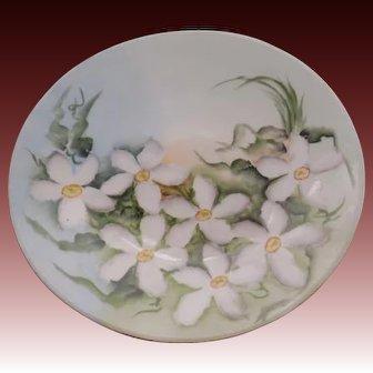 J.P.L. (Jean Pouyant Limoges) Porcelain  Handpainted with Floral Design