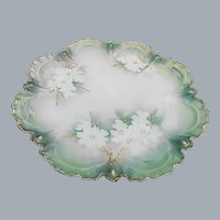 Rare RS Prussia Green Luster White Dogwood Raised Gold Cake Plate Handled