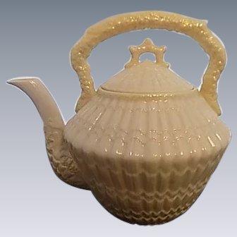 Rare Tridacna Beleek yellow shell pattern Tea Pot