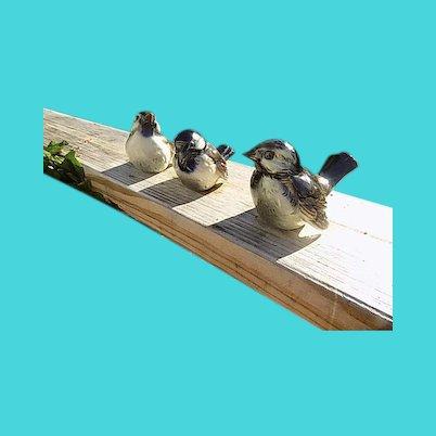 3 Goebel Porcelain Birds - Signed