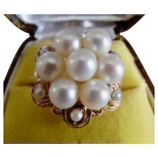 14K Yellow Gold Akoya Pearl Scalloped Edge Dome Cluster Dinner Ring