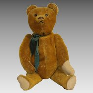 """German Schuco 1920s """"Yes-No"""" Mechanical Talking Teddy Bear with Original Shoe Button Eyes"""