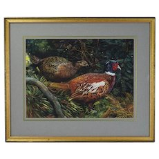 Vintage English Gouache Painting Male Female Ring Neck Pheasants sgnd Sue Wells