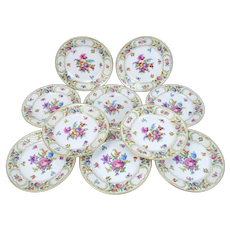 Set 10 Schumann Bavarian China Dinner Plates Floral Chargers Dresdener