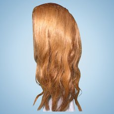 Nice Long Human Hair Wig for Larger Composition or Bisque Doll