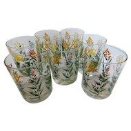 Vintage Neiman Marcus Wildflower Weed Glass Tumblers - Set of 7 - Mid Century