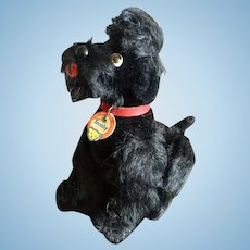 Steiff, Snobby Poodle