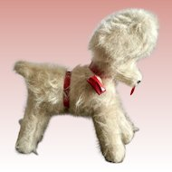 German Toy Poodle