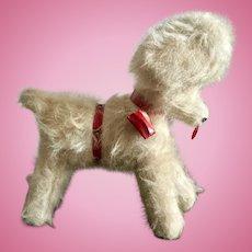 German Toy Poodle
