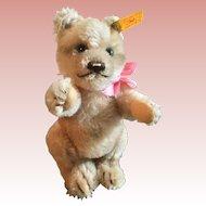 Steiff Mohair Teddy Bear