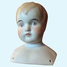 Parian Shoulder Head Boy