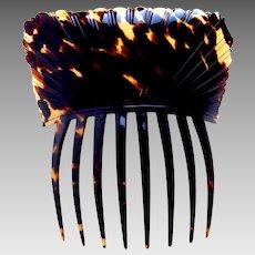 Georgian pressed tortoiseshell hair comb Spanish mantilla style hair accessory