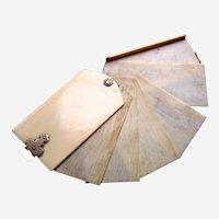 Late Victorian aide memoire notebook cream celluloid