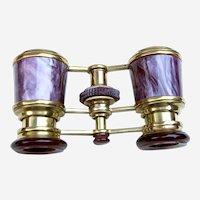 Antique Opera Glasses Brass with Purple Enamel Barrels (ABN)
