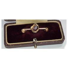 Antique Victorian 9K Gold Snake Serpent Amethyst Brooch Pin Original Box C.1860