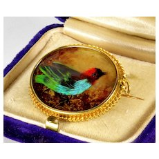 Victorian French 18K Exotic Feather Work Bird Brooch Pin C.1860