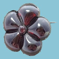 LARGE Georgian Garnet Flower Brooch