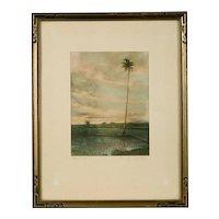 "Original Photograph by Max Freedom Long, ""Hawaiian Rice Field"""