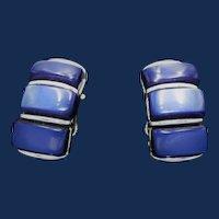 Vintage Signed Lisner Early Plastic Blue Earrings