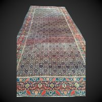 "ca. 1900 Persian SENNAH Oriental Rug, Overall Design  Blue, Cream & Coral  ca. 1880,  6'4"" X 15'3""-Long & Narrow, Reduced! Free Shipping"