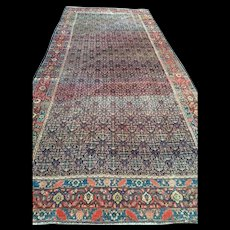 "Persian SENNAH Oriental Rug, Overall Design  Blue, Cream & Coral  ca. 1880,  6'4"" X 15'3""-Long & Narrow, Reduced! Free Shipping"