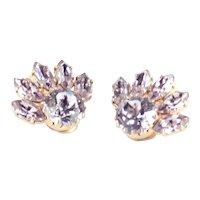 Austria Rhinestone Earrings Dentelle Stones