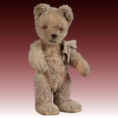 Schuco Yes/No Mohair Bear - 9 Inch