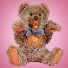 Steiff Zotty Teddy Bear - 13 Inches