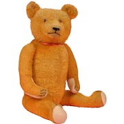 Appealing 1920's Golden Mohair Teddy Bear