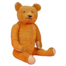 Appealing 1920's Golden Mohair Teddy Bear