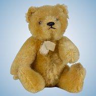 Early Golden Mohair Small Steiff Teddy Bear - 6 inches tall