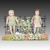 Pair of All Bisque Dolls in Garden Setting - 3.75 Inches
