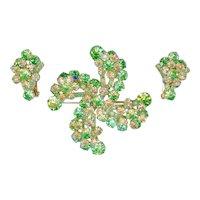 Book Piece Juliana D&E Green Yellow Pinwheel Brooch Pin Earrings
