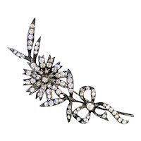 Spectacular Large 19th C Silver Paste Spray Brooch