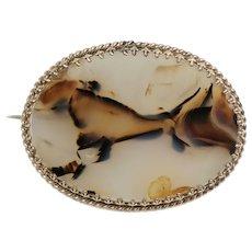 Unusual Scottish Victorian Agate Pin Brooch