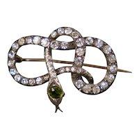 Victorian Sterling Paste Serpent Snake Brooch