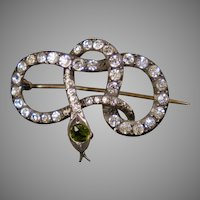 Victorian Sterling Paste Serpent Snake Brooch