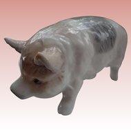 Wonderful Little Porcelain Piggy as a Salt Shaker