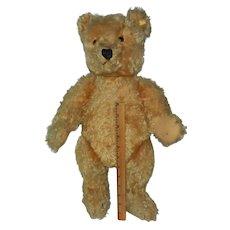 """Wonderful 20"""" or 50cm 1950 Steiff Teddy Bear with Ear Button"""