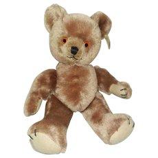 """Vintage 12"""" Musical Mohair Character Novelty Co. Teddy Bear with Ear Tag"""