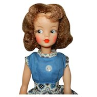 1960's Ideal Tammy Doll with Extra Clothes