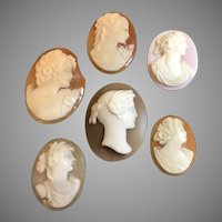 Collection of Victorian Genuine Carved Shell Unset Cameos