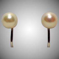 Lovely 14K White Gold & Genuine Pearl Screwback Earrings
