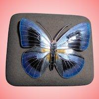 Sterling Silver Guilloche Enamel Butterfly Brooch Scandivavian