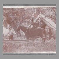 Lady on Horse Sidesaddle Photograph